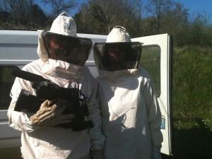 documentaire abeilles miel secret ruche sylvie chabas pollen propolis