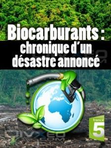 biocarburants-chronique-dun-desastre-annonce-sylvie-chabas-realisatrice